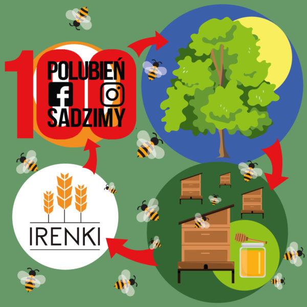 Sadzenie drzew Irenki